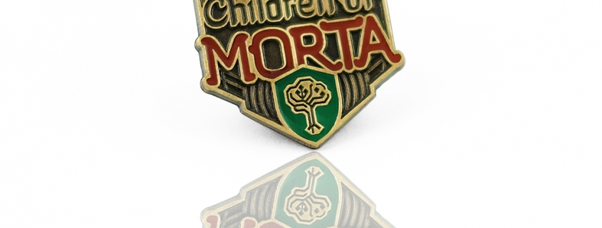 Children of Morta - pins